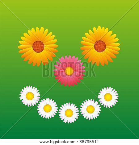 Flowers Smiling Happy Face Fun