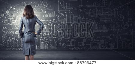 Rear view of businesswoman looking at business sketch on wall