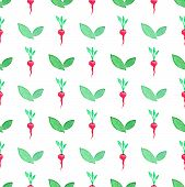 stock photo of radish  - Seamless watercolor pattern with radishes on the white background - JPG