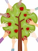 foto of apple tree  - An Illustration Of Hands Picking Apples with Clipping Path - JPG