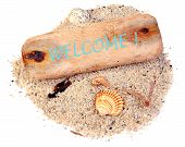 pic of driftwood  - Driftwood with text  - JPG