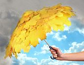 foto of rain cloud  - Umbrella  with autumn leaves in hand protecting good weather from dark clouds of rain - JPG