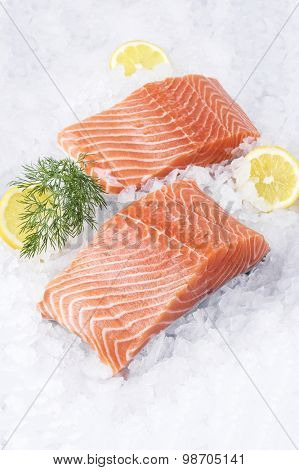 Salmon Fillet on Ice