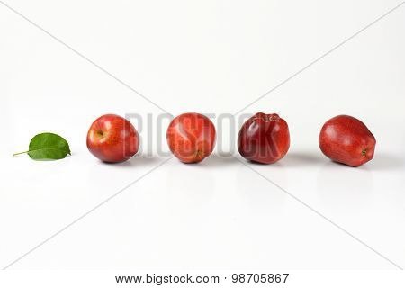 four ripe red apples in a row on white background