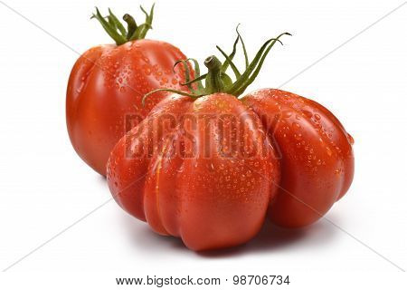 Two Beefsteak Tomatoes With Drops