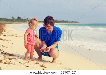 father and little daughter looking at seaweeds on the beach