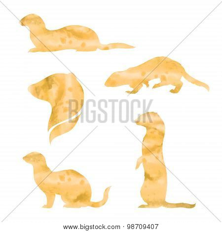 Vector watercolor silhouettes of a ferret.