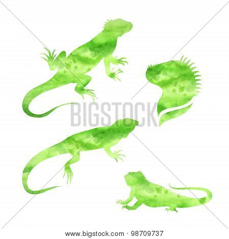 Vector lizard iguana watercolor set vector