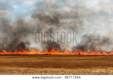 big flames in an harvested field