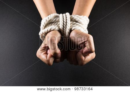 Female Hands Bound In Bondage With Rope