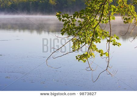 Lake in the morning mist
