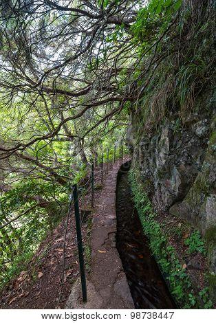 Levada Walk In Madeira