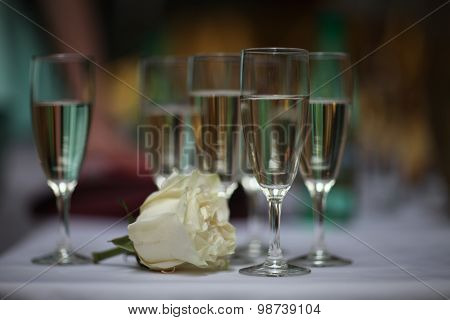 flower rose and glasses with wine