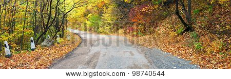 Panoramic autumn landscape