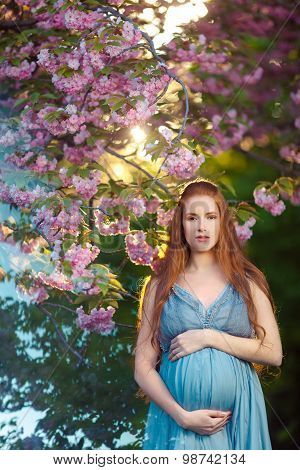 Beautiful pregnant woman in blooming garden