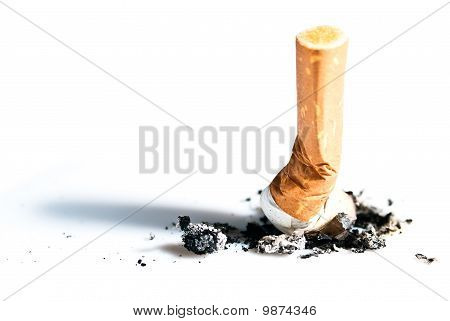 Cigarette Butts Expressed