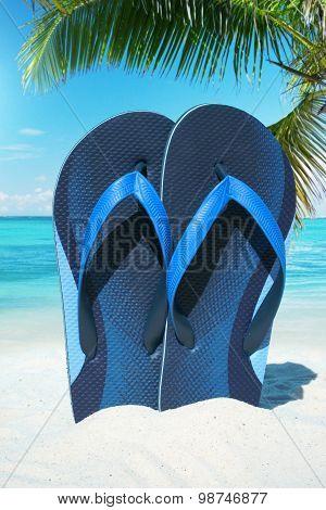 Blue Flip Flops Under Plam Frond