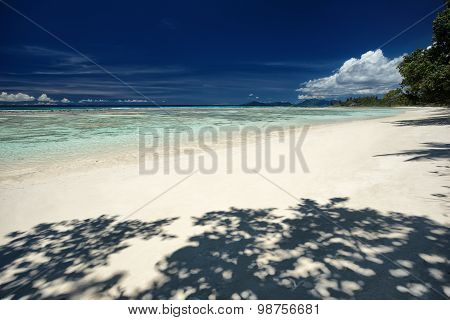 Perfect Sandy Beach With Blue Sky And Shadow Of Trees, Beautiful Place For Holiday And Relax
