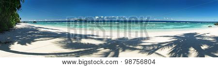 Beautiful Tropical Sandy Beach With Shadows Of The Coconut Palm Trees. Panorama