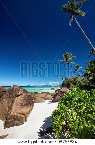 Beautiful Beach With Big Stones And Green Vegetation