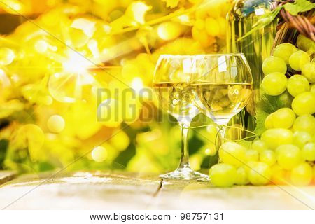 White wine and grapes on sunny background