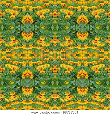 French Marigold Seamless Pattern Background