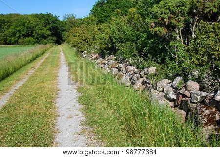Tracks By A Stone Wall