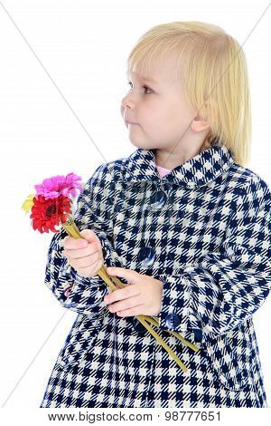 Cute little girl in autumn coat.