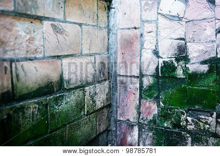 The Corner Of The Old Wall With Dirty Moldy Tiles