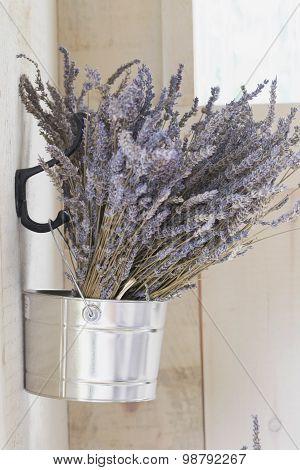 Lavender In Bucket