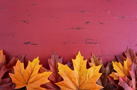 foto of halloween  - Autumn Fall background for Thanksgiving or Halloween with leaves and decorations on rustic wood table with copy space for your text here - JPG