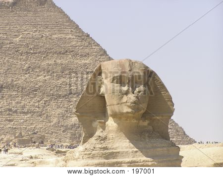 Sphinx Close-up And Pyramid