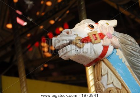 Fierce Carousel