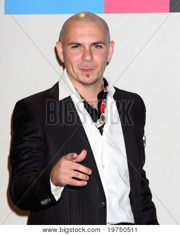 LOS ANGELES - NOV 21:  Pitbull in the Press Room of the 2010 American Music Awards at Nokia Theater on November 21, 2010 in Los Angeles, CA