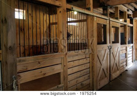 A Stable Stable