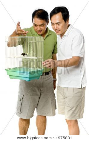 Looking At Birds In Cage