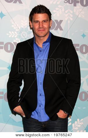 LOS ANGELES - JAN 11:  David Boreanaz arrives at the FOX TCA Winter 2011 Party at Villa Sorriso on January 11, 2011 in Pasadena, CA