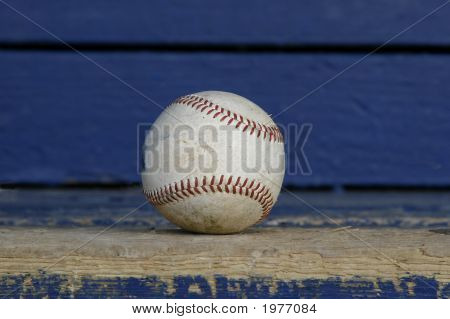 Baseball In The Dugout