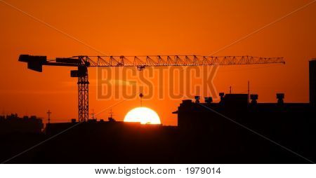 Crane And The Sun