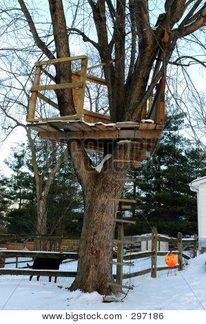 Tree House In Winter