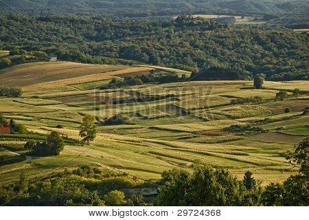 Idyllic Green Valley Natural Scenery