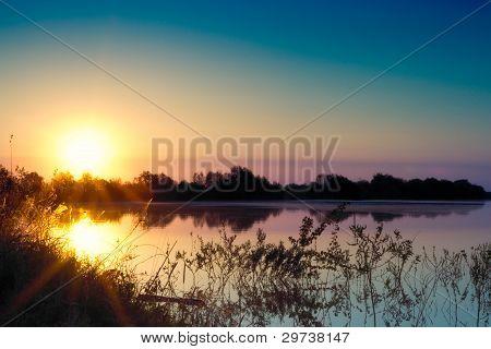 Summer Morning Landscape