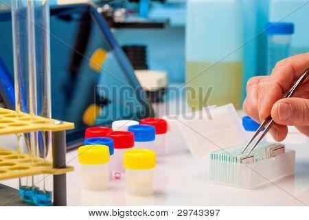 Sample plate rack in lab