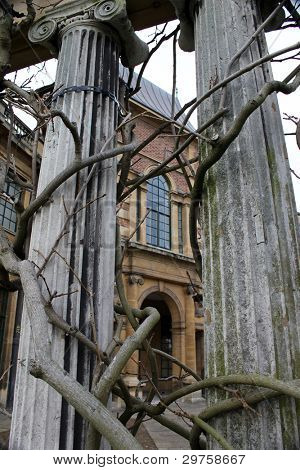 Pillars with vines at Eltham Palace in winter
