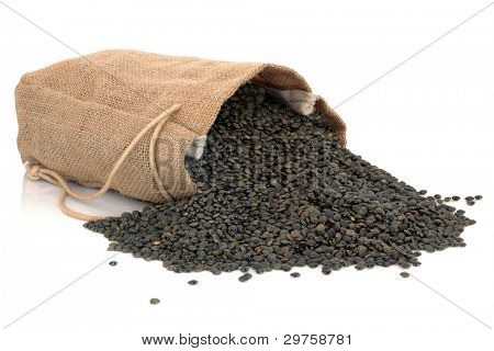 Puy lentils in a hessian sack and scattered isolated over white background.