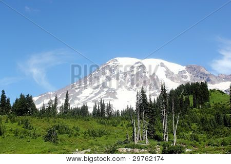 Mt. Rainier From Southwest