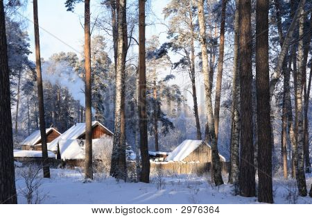 Farm In Winter Wood
