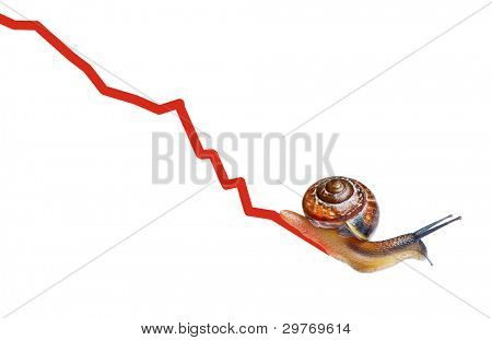 Snail on chart currency isolated on white