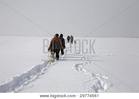 Trekking At Snowy Plain