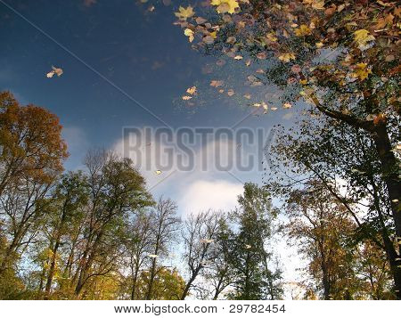 Reflection Of Autumn Landscape In The Water